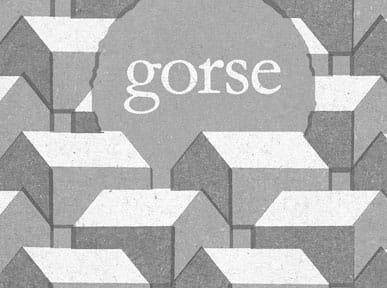 Gorse